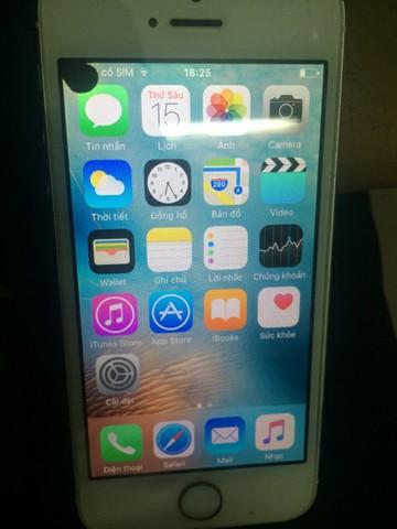 màn hình iPhone 5 bị chấm đen