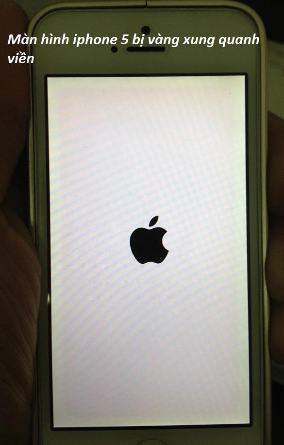 Khắc phục lỗi màn hình iphone 5 bị vàng xung quanh nhanh