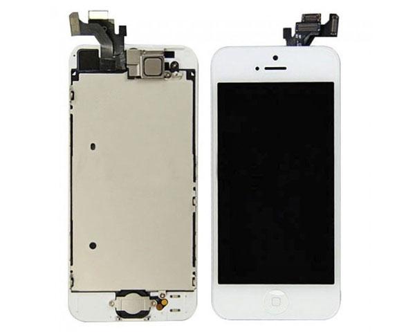 Màn hình điện thoại bị chấm đen